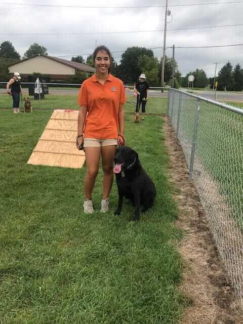 Clicker Training - Dog Training with Adams K-9